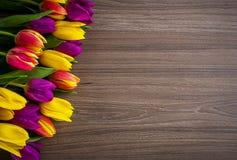 Los tulipanes en un fondo de madera, primavera florecen Foto de archivo libre de regalías
