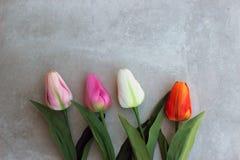 Los tulipanes encendido tuercen el fondo del concerte con el espacio de la copia para el mensaje Fondo del día del ` s de la madr Foto de archivo libre de regalías