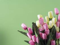 Los tulipanes florecen el ramo en fondo verde imágenes de archivo libres de regalías