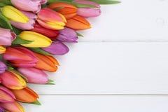 Los tulipanes florecen en día de la primavera o de madre en el tablero de madera Fotografía de archivo