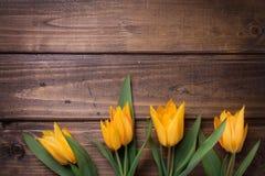 Los tulipanes frescos del amarillo de la primavera florecen en el pl de madera pintado marrón Foto de archivo