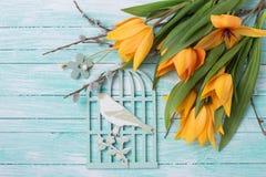 Los tulipanes frescos del amarillo de la primavera florecen, las ramas del sauce y decorat Imágenes de archivo libres de regalías