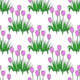 Los tulipanes modelan en el fondo inconsútil blanco Foto de archivo