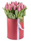 Los tulipanes rosados en un sombrero redondo encajonan, aislado en el fondo blanco Imagen de archivo libre de regalías
