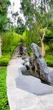 Los turistas de las mujeres están caminando encima de escalera y están viendo la planta de la naturaleza en el jardín al lado de  foto de archivo libre de regalías
