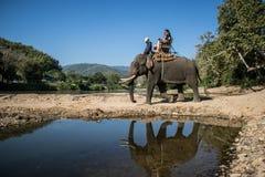 Los turistas en el senderismo del elefante en un elefante acampan Imagenes de archivo
