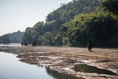 Los turistas en el senderismo del elefante en un elefante acampan fotos de archivo libres de regalías