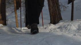 Los turistas entran en invierno en un rastro del bosque almacen de metraje de vídeo