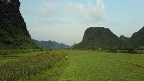 Los turistas montan la vespa a lo largo de la pista rural contra las colinas aéreas almacen de metraje de vídeo