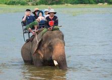 Los turistas montan un elefante en un lago Fotos de archivo libres de regalías
