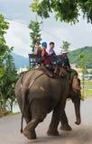 Los turistas montan un elefante en Vietnam Foto de archivo libre de regalías