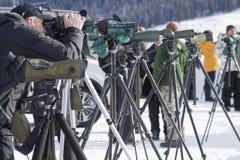 Los turistas observan el lobo en el parque de Yellowstone Fotografía de archivo libre de regalías