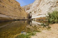 Los turistas pasan una fuente de agua Imagenes de archivo