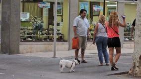 Los turistas son de tarareo y de reclinación sobre las calles de la ciudad almacen de metraje de vídeo