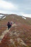 Los turistas suben al top de la montaña de Runa en Cárpatos Fotos de archivo