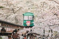 Los turistas vienen al funaoka Sendai en Japón apreciar la belleza de flores de cerezo y esperar encima de la tranvía el punto cu fotografía de archivo libre de regalías