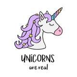 Los unicornios son reales, cabeza del ` s del unicornio con el cuerno del arco iris