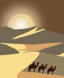 Los vaqueros siluetean en la puesta del sol ilustración del vector