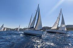 Los veleros navegan con las velas blancas en el mar abierto Foto de archivo