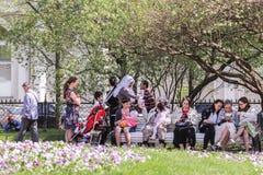 Los veraneantes de la gente se relajan en el jardín Imágenes de archivo libres de regalías