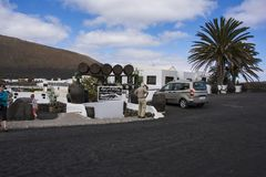 Los viñedos únicos en Lanzarote que muestra un bodega Foto de archivo libre de regalías