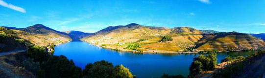 Los viñedos colgantes forman las laderas del ` s el Duero River Valley de Portugal imagen de archivo libre de regalías