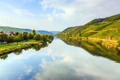 Los viñedos en las colinas del río romántico Mosela afilan en su imagen de archivo