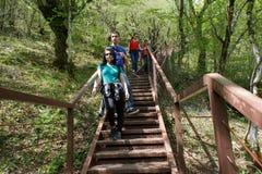 Los viajeros del grupo viajan en el camino artificial en el bosque de la reserva de las montañas Caminantes activos Fotos de archivo libres de regalías