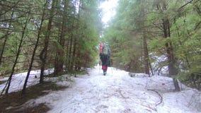 Los viajeros se están moviendo a través del bosque del invierno en la nieve almacen de metraje de vídeo