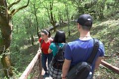Los viajeros viajan en el camino artificial en el bosque de la reserva de las montañas El emigrar junto Fotografía de archivo