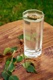 Los vidrios de jugo de la savia del abedul beben ramas del abedul en la nutrición útil de la tabla del fondo de la primavera sana Fotos de archivo libres de regalías