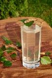 Los vidrios de jugo de la savia del abedul beben ramas del abedul en la nutrición útil de la tabla del fondo de la primavera sana Imagenes de archivo