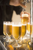 Los vidrios de la cerveza de barril de la cerveza dorada bombean en barra del restaurante Imagen de archivo