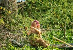 Los vietnamitas que la selección dien dien la flor, Sesbania sesban Imagen de archivo