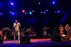 Los Wailers en concierto Foto de archivo libre de regalías