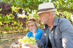 Los Winemakers engendran e hijo en vi?edo foto de archivo libre de regalías