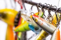 Los wobblers coloreados del cebo de pesca se suspendan en espacio en blanco del ` s de la barra Imagen de archivo libre de regalías
