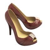 Los zapatos de las mujeres de cuero del cocodrilo con los tacones altos Fotografía de archivo libre de regalías
