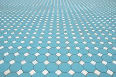 Losas azules, modeladas pavimentando las tejas, CCB del piso del ladrillo del cemento fotografía de archivo