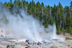 Losbarstende geiser in Yellowstone, Wyoming royalty-vrije stock foto's