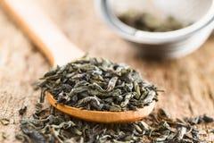 Lose grüne Teeblätter stockbilder