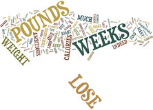 Lose Pounds In Weeks Text Background Word Cloud Concept Royalty Free Stock Photo