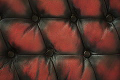 сlose up old red black luxury buttoned leather background Royalty Free Stock Photo