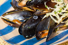 Сlose-up сooked mussels in shells Royalty Free Stock Images