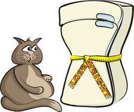 Lose weight - cat glutton Stock Photo