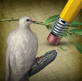 Losing Peace. Crisis concept with a white dove holding an olive branch being erased by a pencil eraser as a symbol of challenges in search for a truce or Stock Images