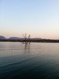 Loskop Nature Reserve. Landscape view at Dusk of Loskop Nature Reserve,South Africa Stock Photography