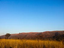 Loskop Nature Reserve. Landscape view of Loskop Nature Reserve,South Africa Stock Images