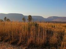 Loskop Nature Reserve Stock Images
