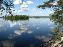 lososinnoe озера Стоковое Фото